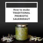 Traditional Probiotic Sauerkraut